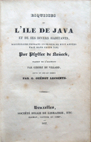 Thumb_esquisses-java-divers-habitants-1e370bc1-fba1-4865-8b15-c2745f4d4216