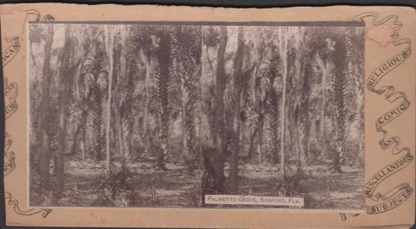 Photo-stereo-palmetto-grove-sanford-1880-4ddf6851-0d4e-4cc2-bf04-acf04a959ad2