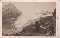 Thumb_madatsch-gletscher-65aa7e8f-8fca-4952-be72-3a82121fc90f